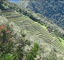 Peru 275