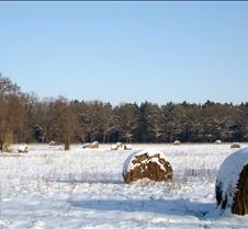 Snowy Hay Field, Brandenburg