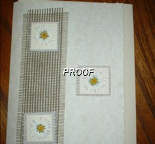 Dried_daisies_on_hessian