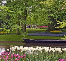 Keukenhof Flower Park, Holland