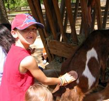 feild trip 2005 first grade 018