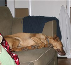 Comfortable?!