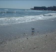 Beach Atlantic City8
