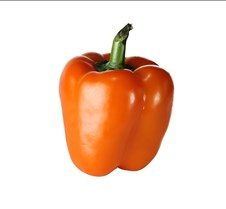 Orange Pepper Standing Up