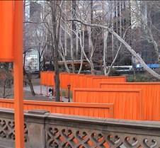 Central Park - The Gates