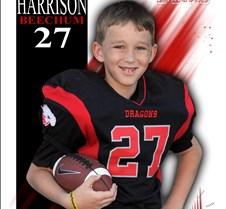1311-0022 - Harrison Beechum - 16x20