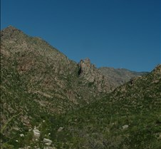 Tucson Sabino Canyon 24