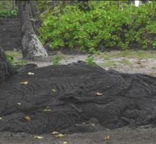Hawaii 2010 233