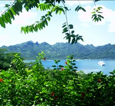 Tahiti05 021