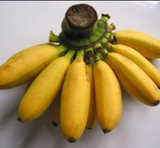 small bananas