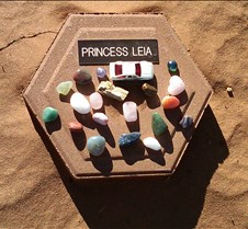 BF759 AO Princess Leia