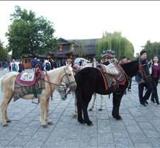 2008 Nov Lijiang 119