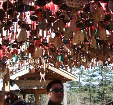 2008 Nov Lijiang 070