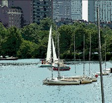 Sailboats Charles River