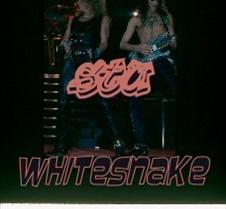 Whitesnake Zep Slides