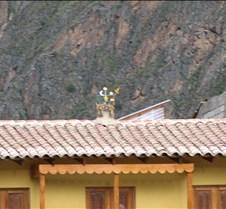 Peru 175