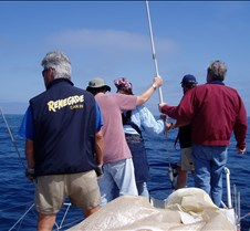 Practice Sail...?