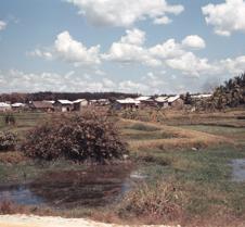 Fields Near Village