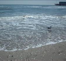 Beach Atlantic City7