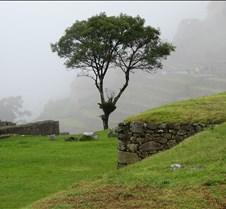 Peru 317