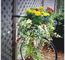 Bike_flowerbed