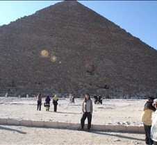 Robin w/Great Pyramid