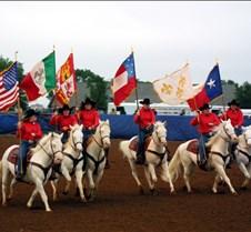 HSU 6 white horses