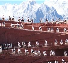 2008 Nov Lijiang 083