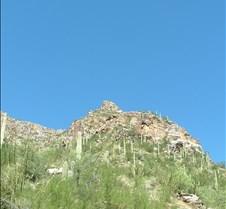 Tucson Sabino Canyon 18