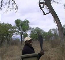 Ivory Lodge & Safari Pictures0020