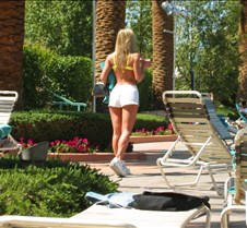 Scenery at the MGM Grand Pool