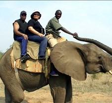 Elephant Ride0013