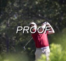 090513_Golf03