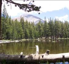 Yosemite Coming home from San Jose through Yosemite.