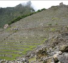 Peru 372