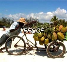 Boca chica vendiendo de coco