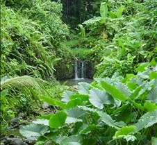lucia waterfallclose