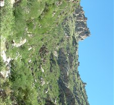 Tucson Sabino Canyon 31