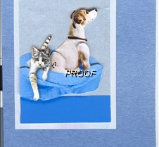 Kitten_and_Jack_Russell