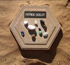 BF765 AO Patrick Ocelot