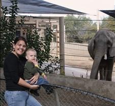 J Zoo 0611_116