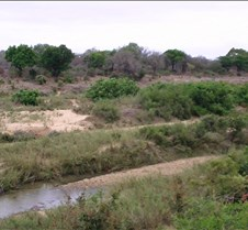 Ivory Lodge Safari Mupulanga0007
