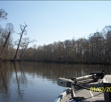 Fishing on the Amite River