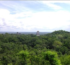 the view of Tikal from Temple 4