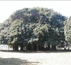Pesach 2004 240