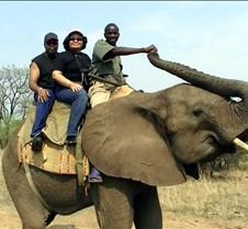 Elephant Ride0014