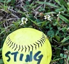 Sting13Sept_-206