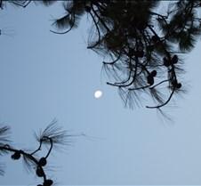 2008 Nov Lijiang 186