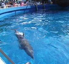 Miami Seaquarium 066