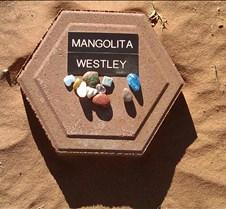 BF762 AO Mangolita